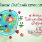 ประสิทธิภาพฟ้าทะลายโจร โดย พญ.อัมพร เบญจพลพิทักษ์ อธิบดีกรมการแพทย์แผนไทยและการแพทย์ทางเลือก