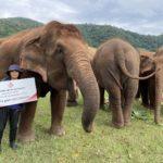 สยามไวเนอรี่ ห่วงใยเยี่ยวยา ช้างไทย-สัตว์นานาชนิด ส่งเงินสนับสนุนช่วยเหลือ 3,000,000 บาท