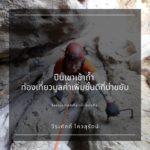 บทความซีรี่ย์ : ท่องเที่ยวถ้ำ ตอนที่ 2 '' ปีนเขา เข้าถ้ำ'' : ท่องเที่ยวมูลค่าเพิ่มชั้นดีที่น่าขยับ : วีระศักดิ์ โควสุรัตน์
